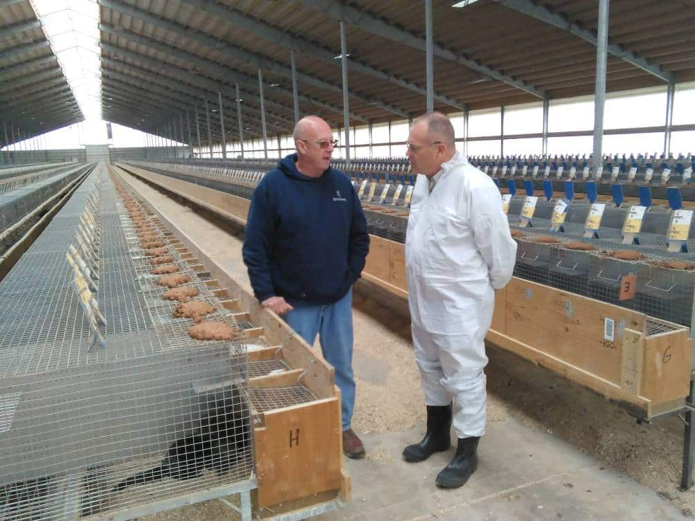 agro practice in Denmark, аграрна практика в Данії